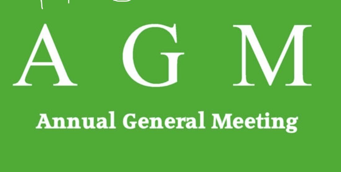 AGM – 2019 Minutes